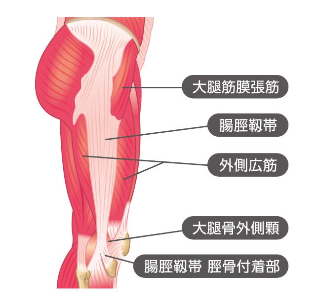が 膝 の 痛い 外側