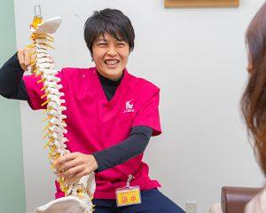 骨模型を持った柔道整復師